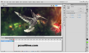 Adobe Flash Pro Key